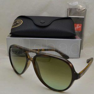 Ray Ban RB4125 Gradient Brown Lens